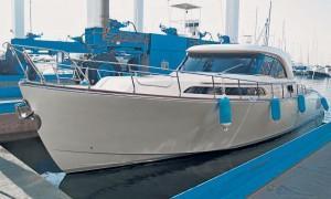Mochi 51 Dolphin